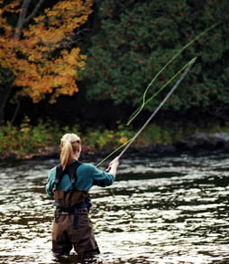 Maine kennebec river fly fishing guide guided trips for Fly fishing maine